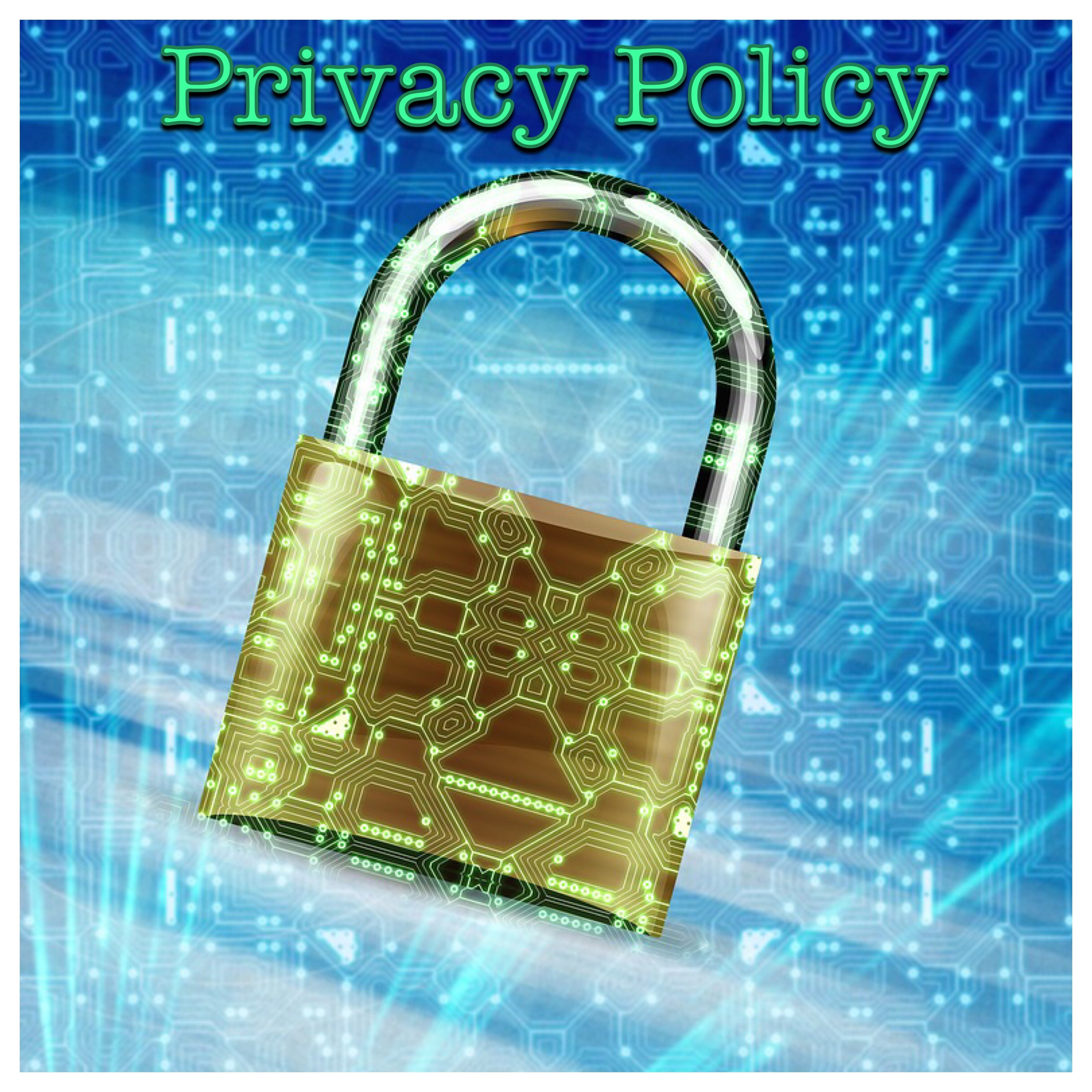 Privacy Policy Logo (padlock and computer circuitry)