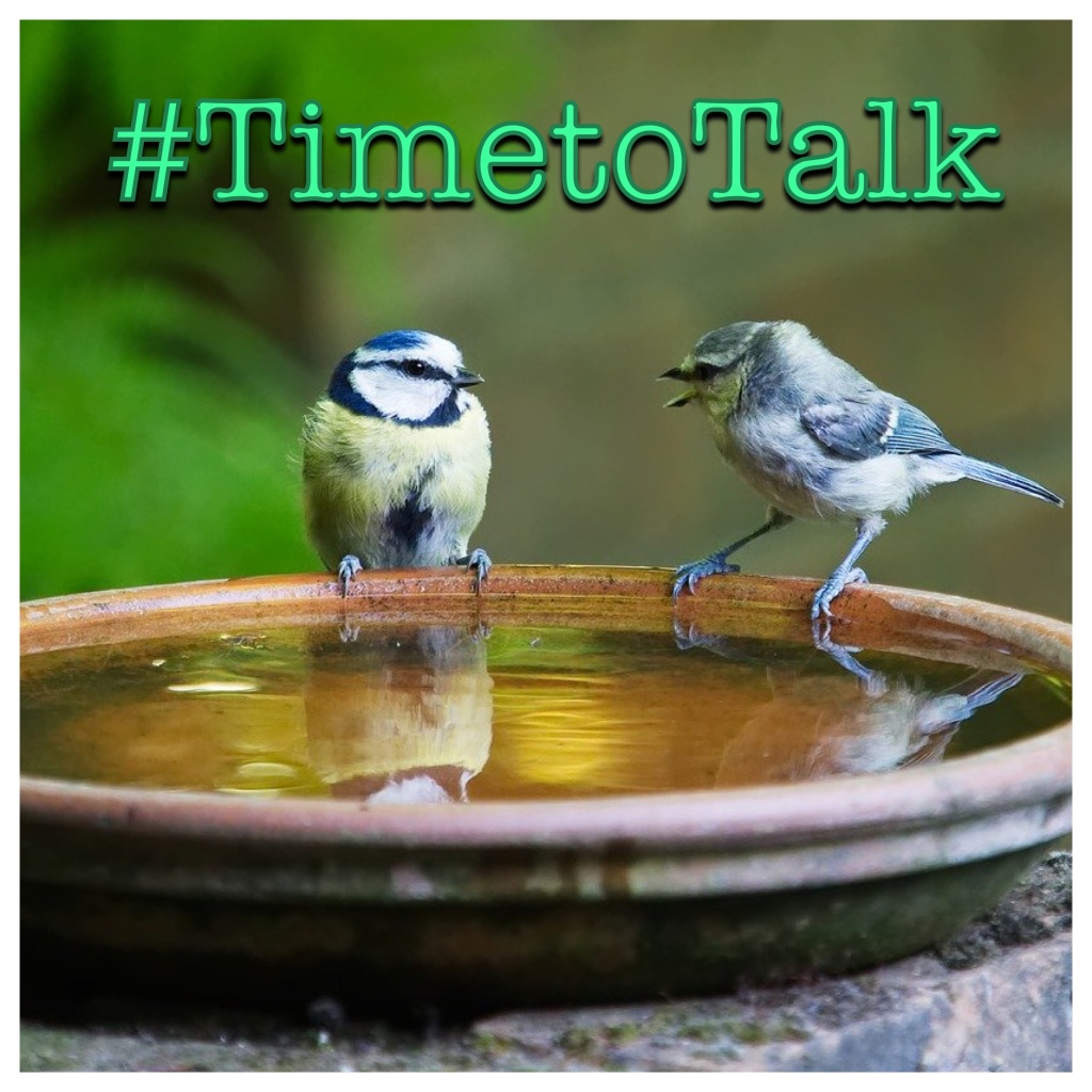 #TimetoTalk Logo - 2 birds by water bath